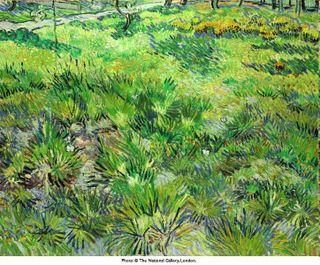 Van Gogh - L'herbage aux papillons, 1890