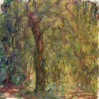 Monet - Le Saule pleureur, 1919